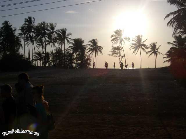 Индия  Пляж Боливуда 3*