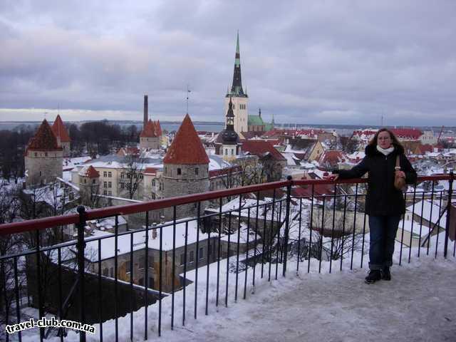 Эстония  Вид со смотровой площадки Вышгорода.