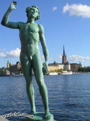 Швеция  Стокгольмский Адонис