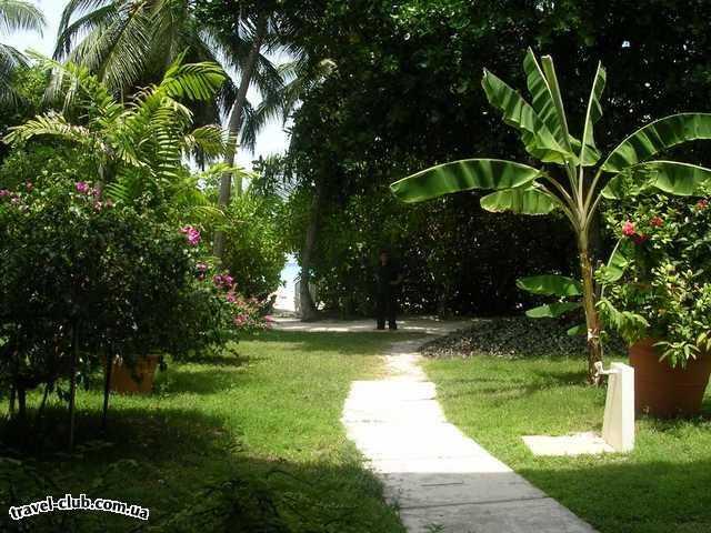 Мальдивские о-ва  Laguna Maldives  вид из бунгало