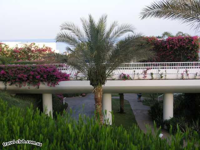 Египет  Шарм Эль Шейх  Ritz carlton 5*  Территория