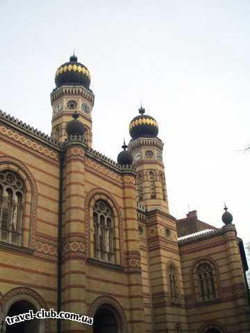 Венгрия  Будапешт  Платанус ***  Большая синагога. 06/03/2006