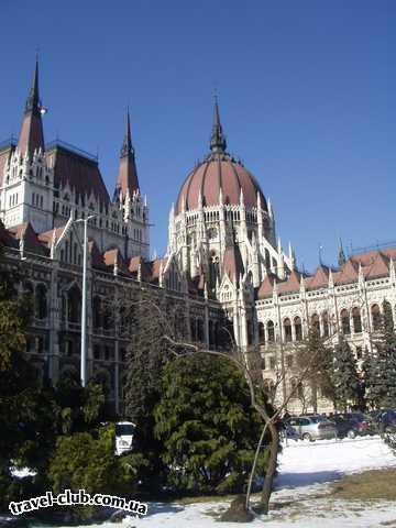 Венгрия  Будапешт  Платанус ***  Около Парламента. 07/03/2006