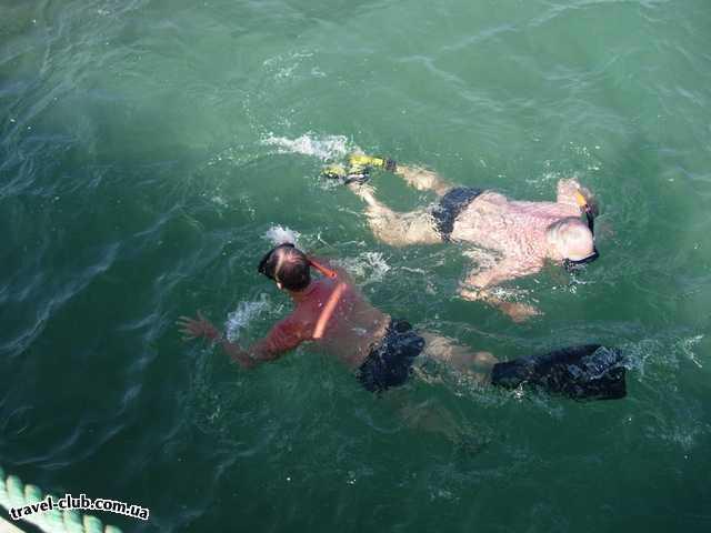 Египет  Хургада  LTI - Dana Beach Resort  Любители поплавать в ластах и масках приезжают на Крас