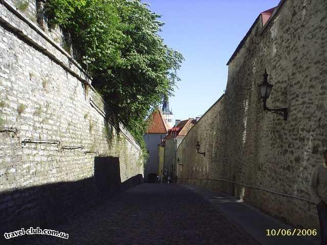 Эстония  Таллинн  Scane  В Старом городе