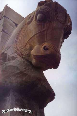 Иран  Шираз  Персеполис, голова коня