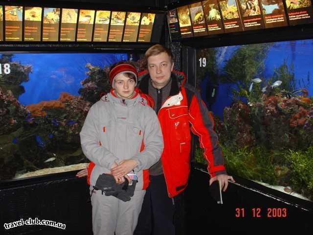 Финляндия  Ювяскуля  Тоже аквариум