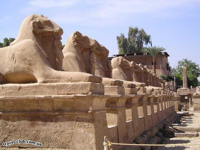 Египет  Достопримечательности  Карнакский храм (Луксор)