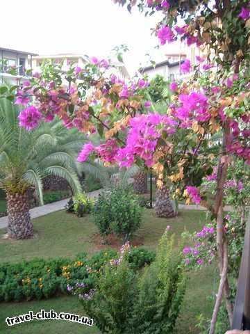 Турция  Алания  Riva Club N  4*  <br />  Вид с балкона греет душу воспоминаниями, хотя кач�