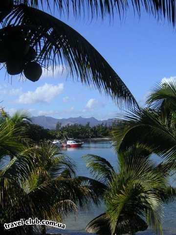 о. Маврикий  раннее утро