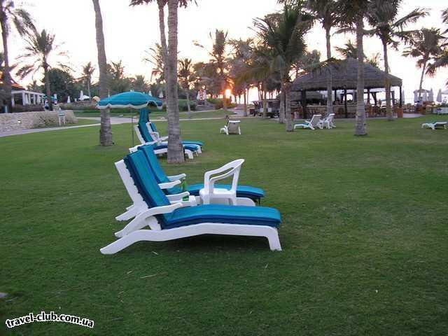 ОАЭ  Jebel Ali Hotel & Golf Resort 5*<br /> Пляж. Сначала травка, а потом пес�